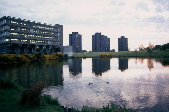 Uni of Essex towers
